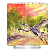 Flamingo In Alcazar De San Juan Shower Curtain