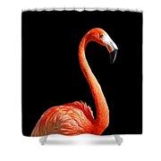 Flamingo Portrait Shower Curtain