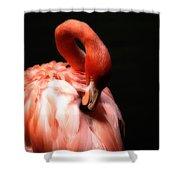 Flamingo Softness Shower Curtain