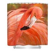 Flamingo - Spirit Of Balance Shower Curtain