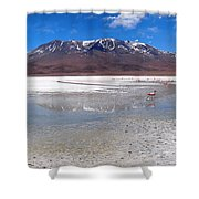 Flamingos At The Altiplano In A Salt Lake Shower Curtain