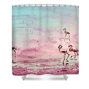 Flamingos In Camargue 03 Shower Curtain