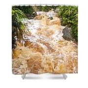Flash Flood In West Coast Creek Of Nz South Island Shower Curtain