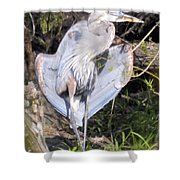 Flasher In The Park Shower Curtain