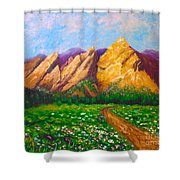 Flat Iron Colorado Shower Curtain