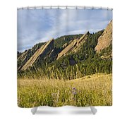 Flatirons With A Purple Wildflower  Shower Curtain