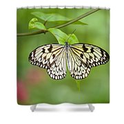 Fleeting Beauty Shower Curtain
