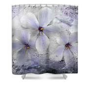 Fleeting Visions Shower Curtain