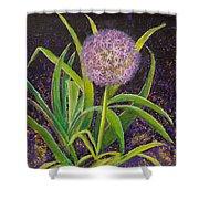 Fleur D Allium With Iris Leaves Backup Shower Curtain