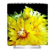Fleurs De Cactus 2 Shower Curtain