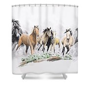 Flight For Freedom Shower Curtain