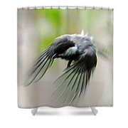 Flight II Shower Curtain