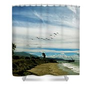 Flight Of Pelicans Shower Curtain
