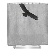 Flight Of The Buzzard Shower Curtain