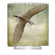 Flight Of The Egret Shower Curtain