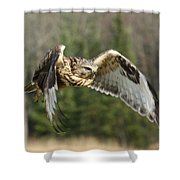 Flight Of The Well-fed Shower Curtain