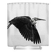 Flight Of The White Necked Heron V2 Shower Curtain