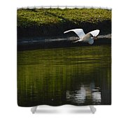 Flight Over Pond Shower Curtain