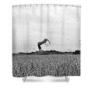 Flight Over The River Of Grass Shower Curtain