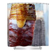 Flint Knapping Art Shower Curtain