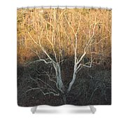 Flint River 12 Shower Curtain