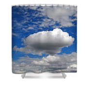 Floater Shower Curtain