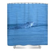 Floating Along  Shower Curtain