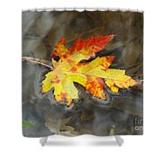 Floating Autumn Leaf Shower Curtain