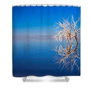 Floating Deadwood Shower Curtain
