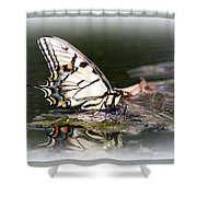 Floating In Water - Swallowtail -butterfly Shower Curtain