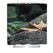 Floating.  Tahquitz Canyon. Palm Springs California.  Shower Curtain