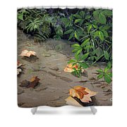 Floating Leaves By George Wood Shower Curtain