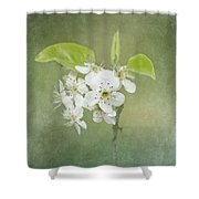 Floating On Green Shower Curtain