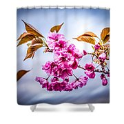 Floating To Earth Shower Curtain