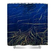 Floating Weeds In Picture Lake Shower Curtain