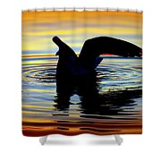 Floating Wings Shower Curtain