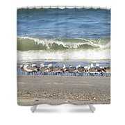 Flock And Wave Shower Curtain