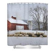 Flock Of Sheep Shower Curtain