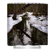 Flooding Forest Shower Curtain