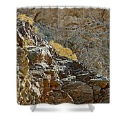 Flora In Sunlight In Big Painted Canyon Trail In Mecca Hills-ca Shower Curtain