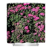 Floral Afternoon Shower Curtain