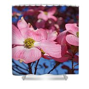 Floral Art Print Pink Dogwood Tree Flowers Shower Curtain