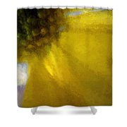 Floral Art Xxxi Shower Curtain