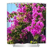 Floral Cascade Shower Curtain