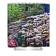 Floral Cathedral Shower Curtain