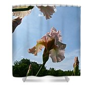 Floral Clouds Shower Curtain