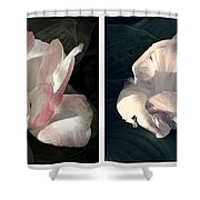 Floral Duo Shower Curtain