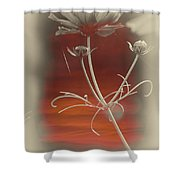 Floral Early Garden Light 12 V Shower Curtain