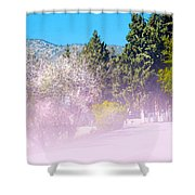 Floral Entrance Shower Curtain