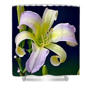 Floral Fanfare Shower Curtain